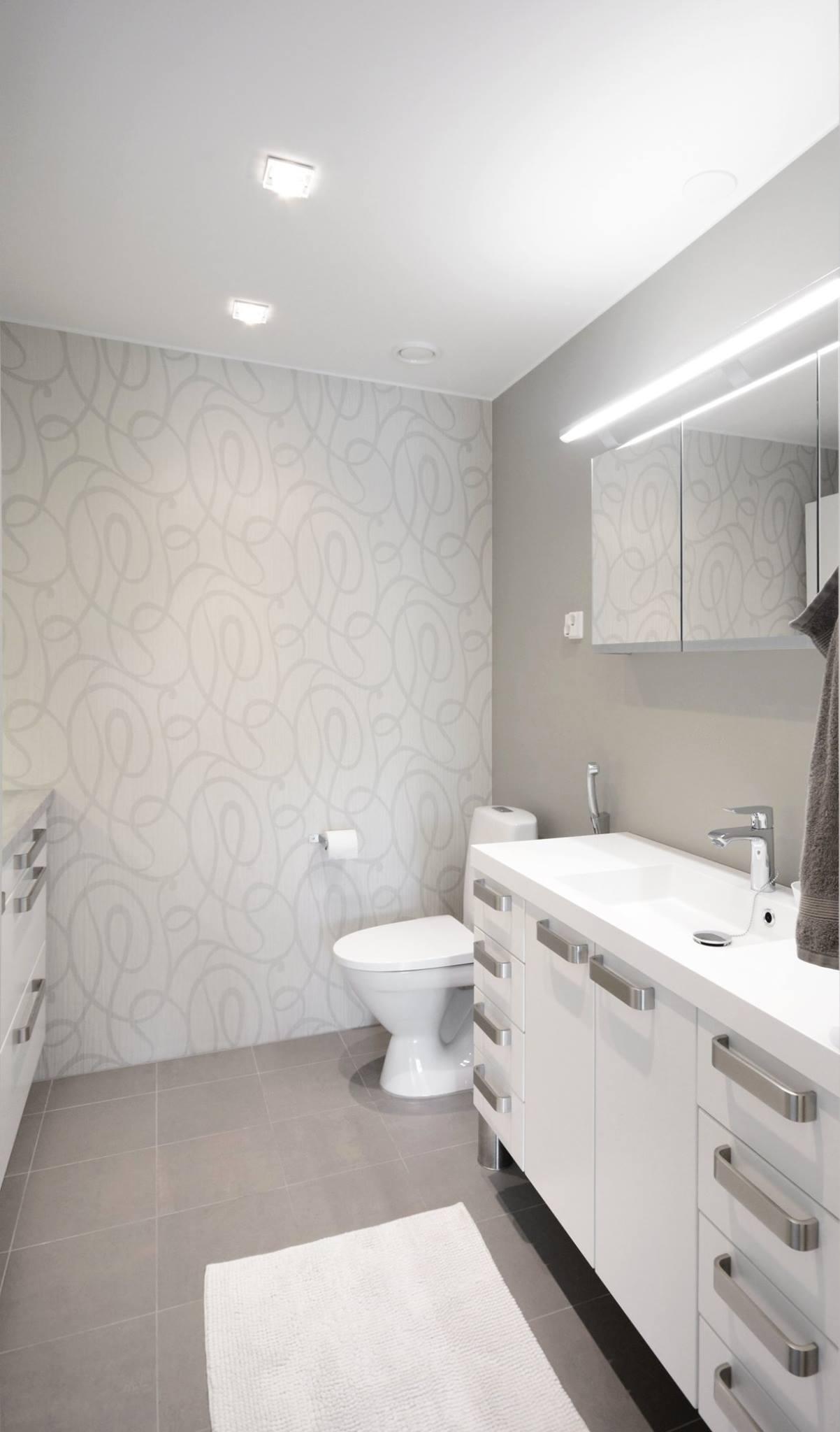 moderni-kivitalo-wc